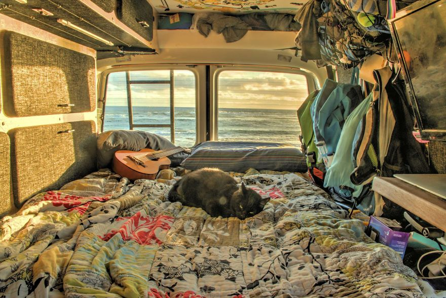 Guy Quits Job and Sells Everything He Owns Just to Travel With His Cat