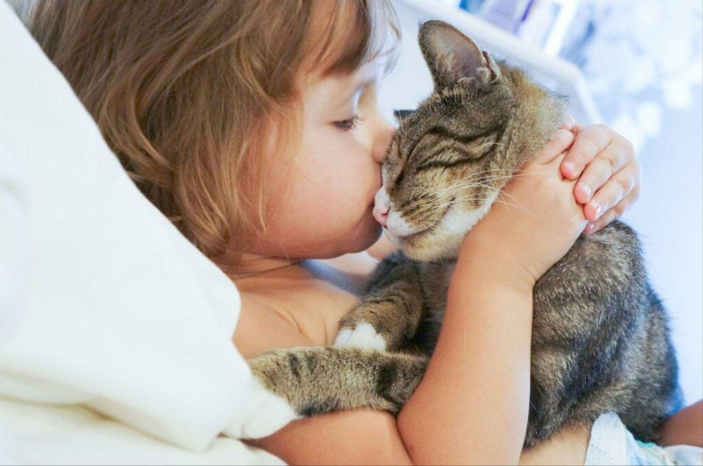 The Healing Powers Of Cats: Your Furry Friend Can Boost Your Health