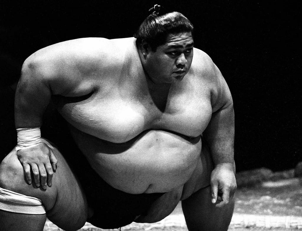 50+ Massive Athletes, Including The Largest In The World