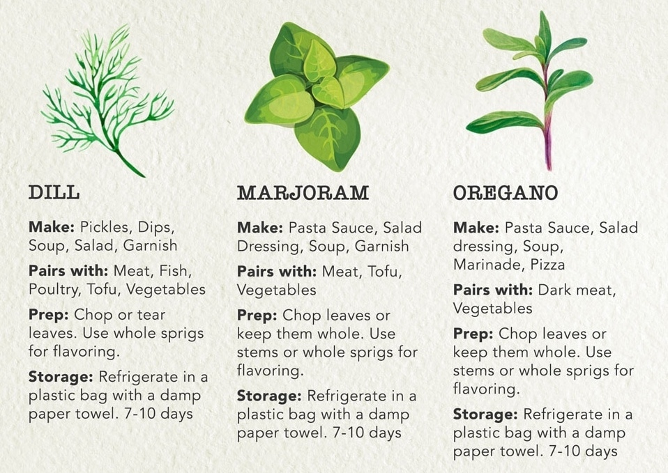 Guide to Cooking with Fresh Herbs